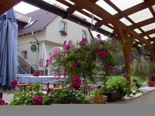 Pension und Gasthaus AmWachtelberg - Pension